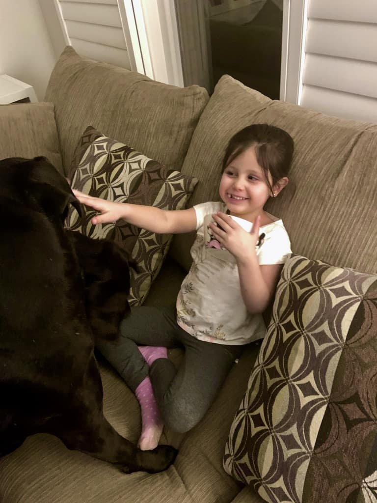 Little Girl and Her Dogs