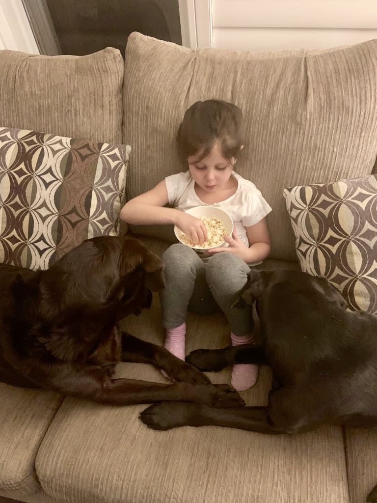 Little Girl And Her Dogs Eating Popcorn